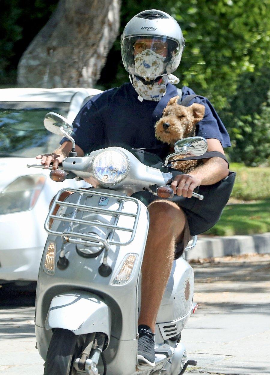 Armie Hammer Rides Vespa With Dog Following Elizabeth Chambers Split