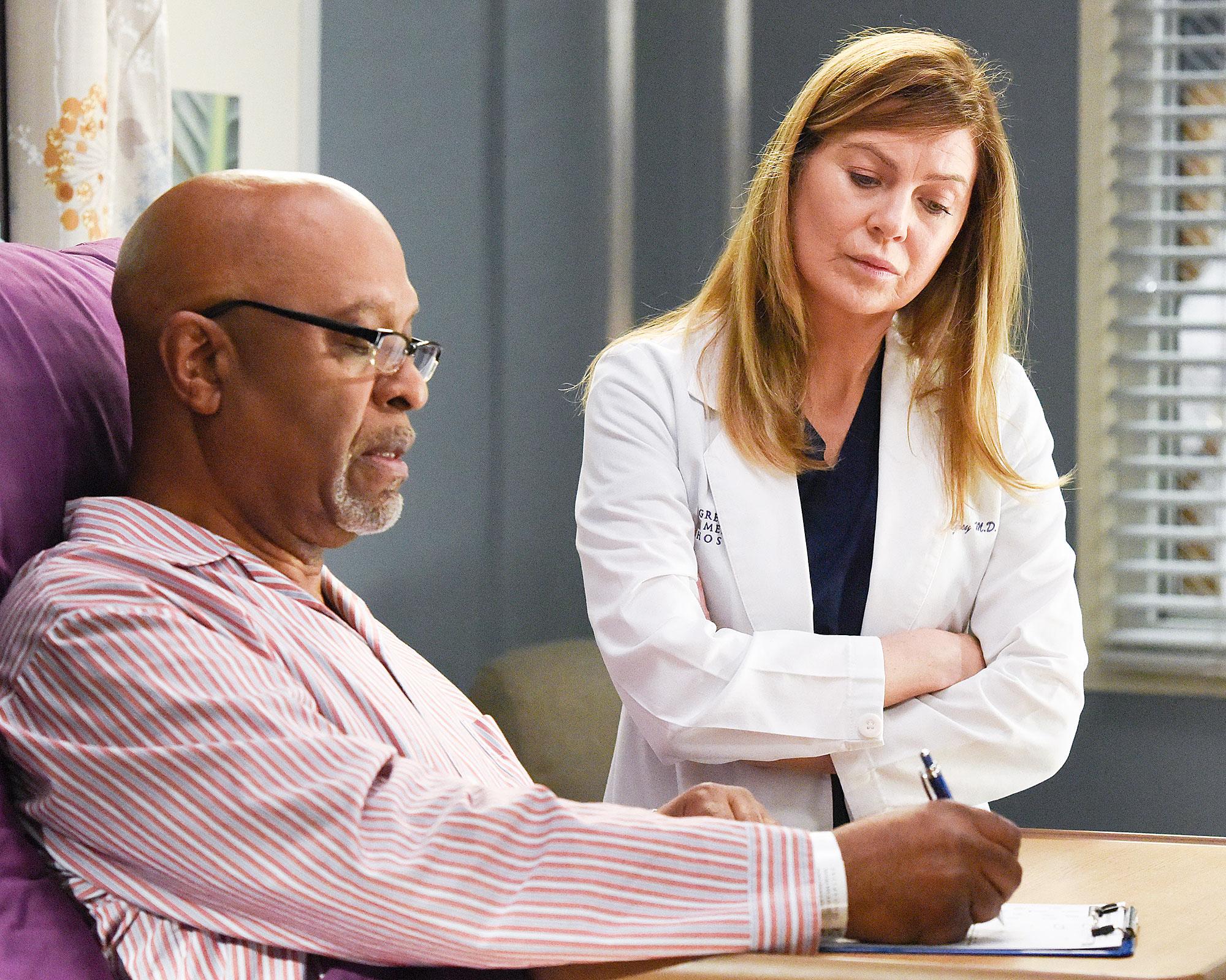 James Pickens Jr and Ellen Pompeo on Greys Anatomy How Greys Anatomy Is Preparing to Cover the Coronavirus Pandemic in Season 17
