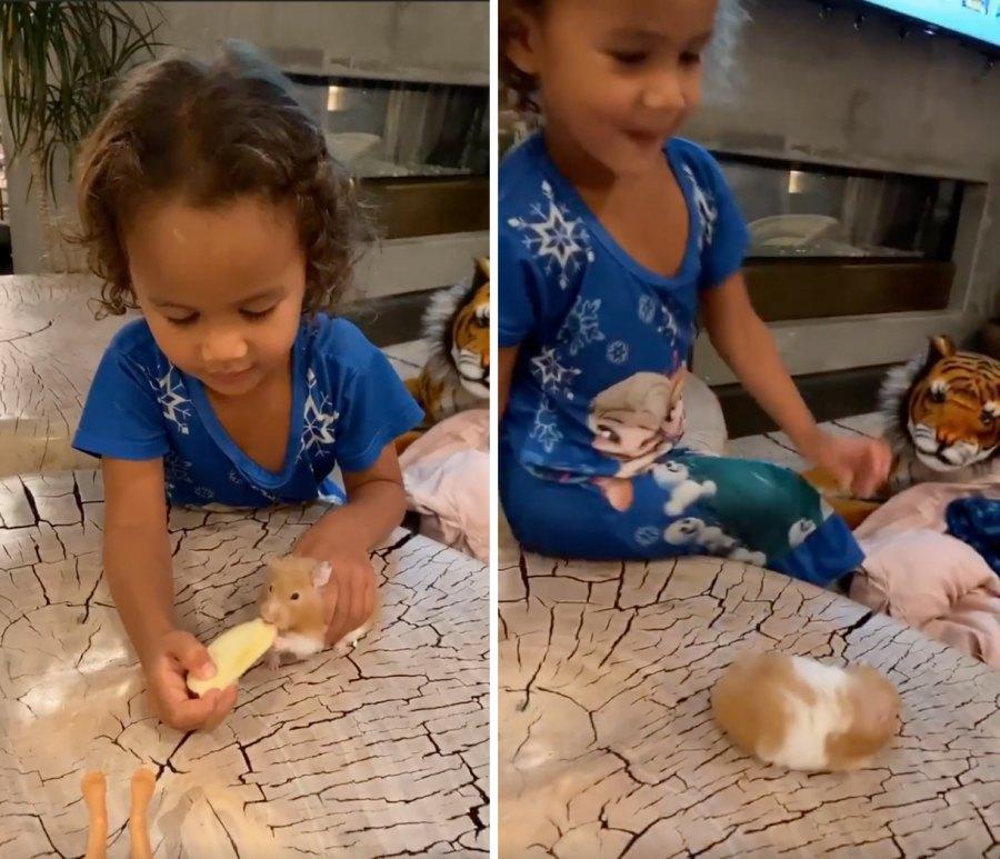 Luna Chrissy Teigen Frozen nightgown hamster