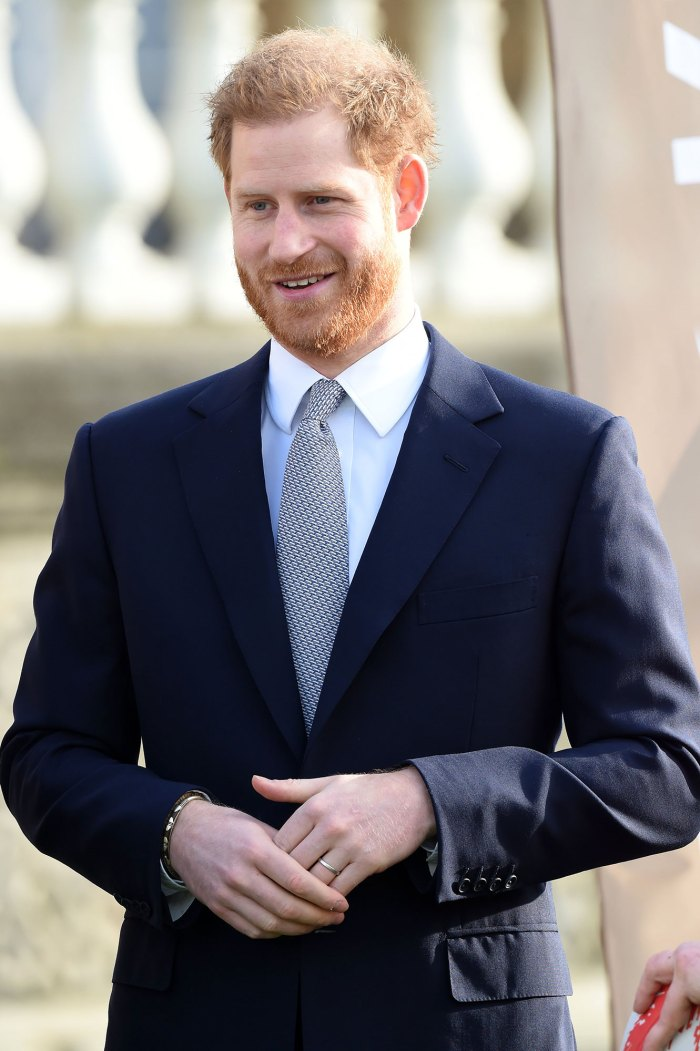 Prince Harry Drops HRH Title From His Tourism Program Travalyst Website