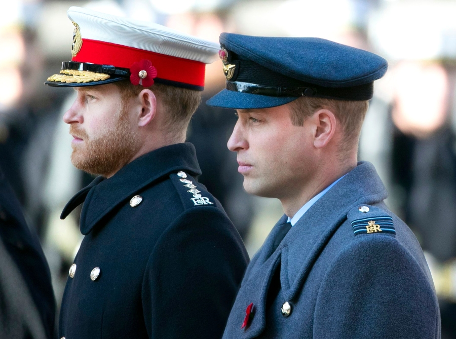 Prince Harry and Prince William Cannot Settle Rift Until In UK Together
