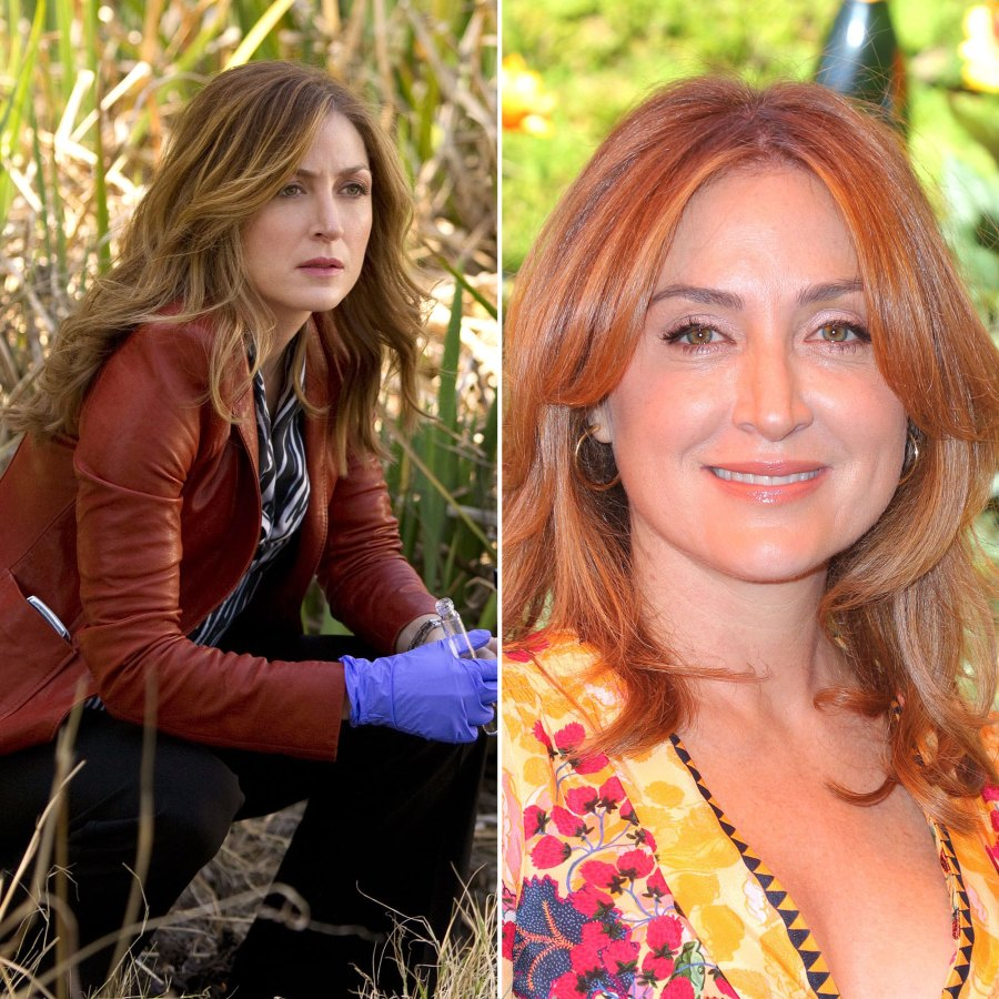 Sasha Alexander Rizzoli Isles Cast Where Are They Now