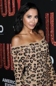 Naya Rivera's Mom Prays, Joins Search Boat at Lake Where 'Glee' Star Went Missing