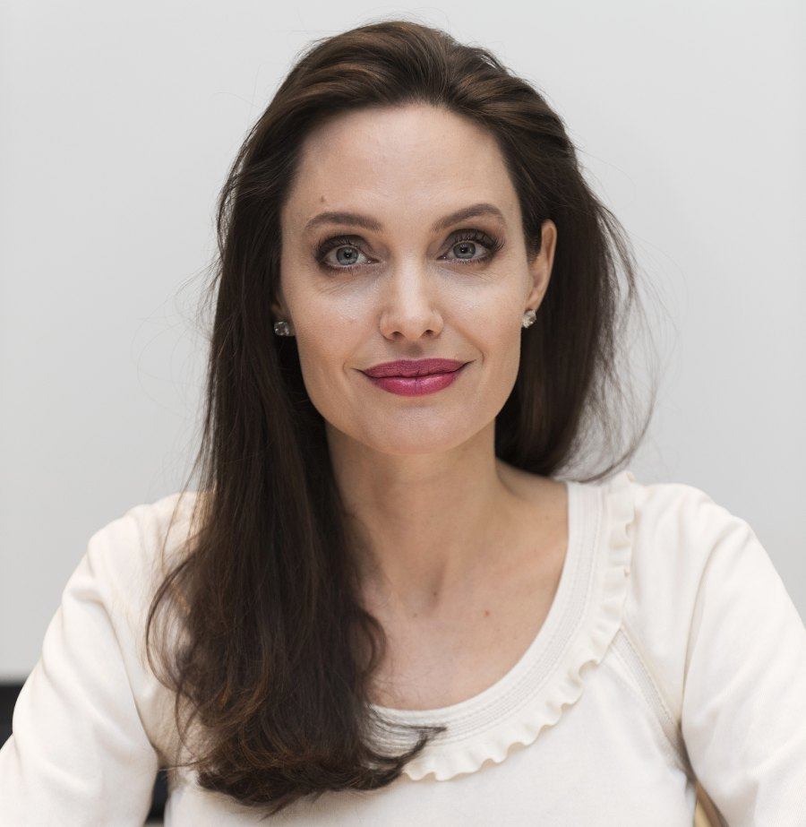 5 Angelina Jolie and Brad Pitt Ups and Downs divorce