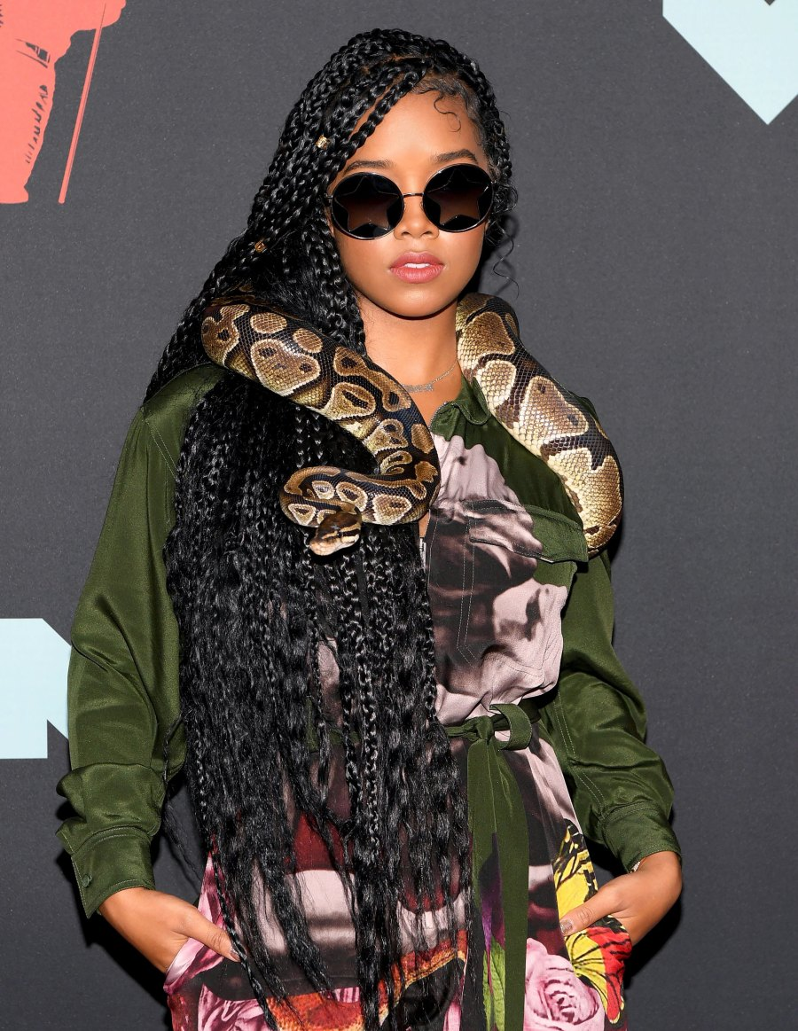 From Snakes to Meat Purses, See the All-Time Craziest VMAs Accessories