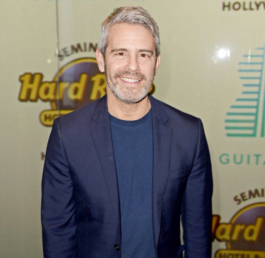 Andy Cohen and RHOBH Stars Reveal If They Believe Denise Richards or Brandi Glanville Amid Affair Accusations 1