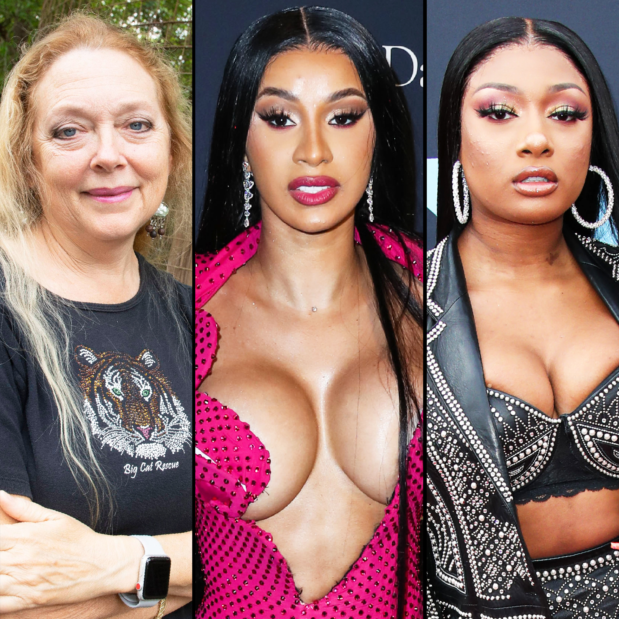 Carole Baskin Slams Cardi B Megan Thee Stallion For Big Cats In Video