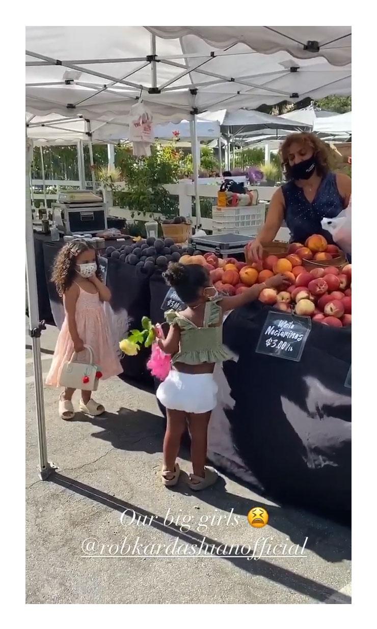 Dream True Kardashian Face Mask Farmer Market