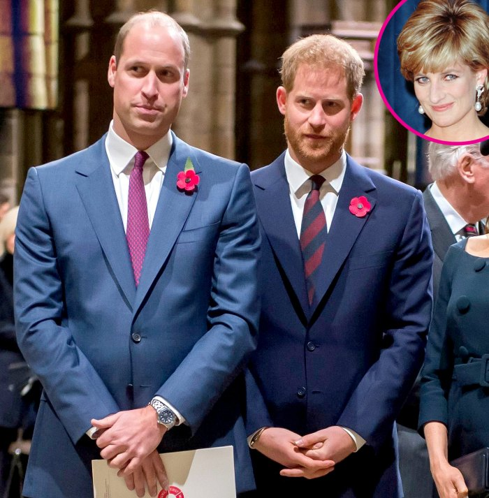 Prince William Harry Issue Joint Statement to Honor Mom Princess Diana 2