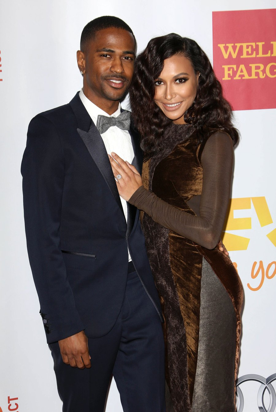Big Sean and Naya Rivera Celebrity Couples Who Cut Their Engagements Short