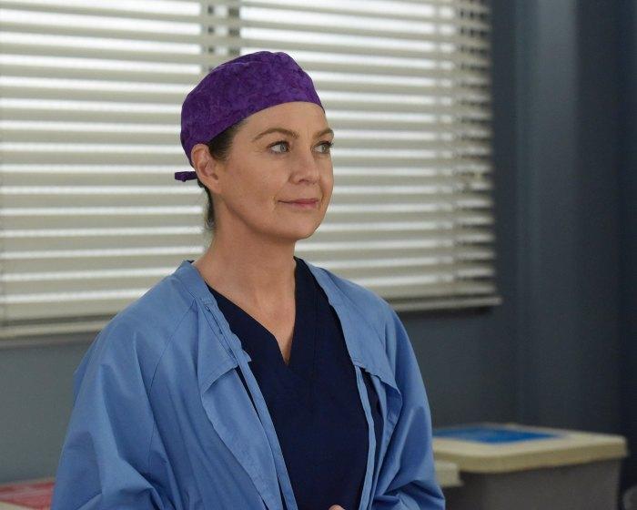 Ellen Pompeo Teases 'New Favorite Couple Grey's Anatomy