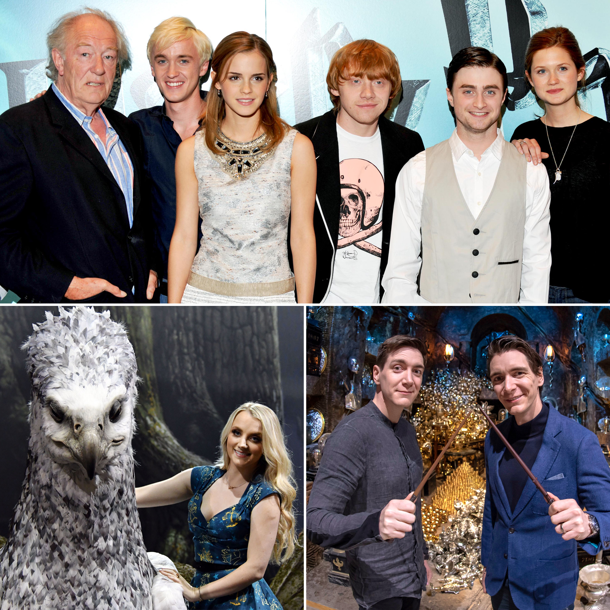Harry Potter Stars Where Are They Now
