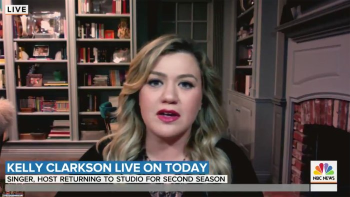 Kelly Clarkson Says No One Expects to Get Divorced Amid Split 2
