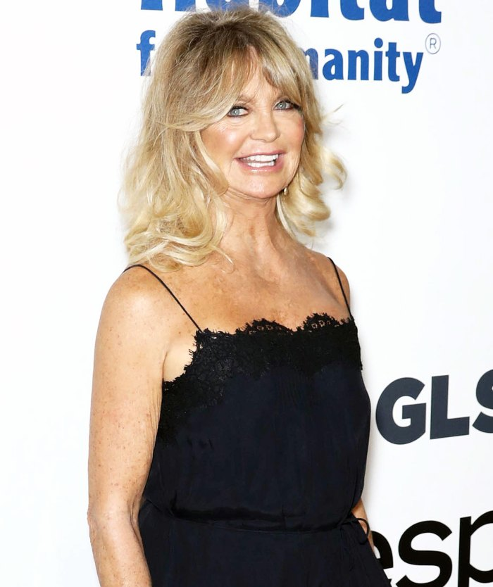 Goldie Hawn attends Samsungs Charity Gala Goldie Hawn Teases First Wives Club Reunion