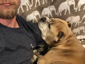 Kaley Cuoco Husband Karl Cook Mourn Death Their Rescue Dog Petunia
