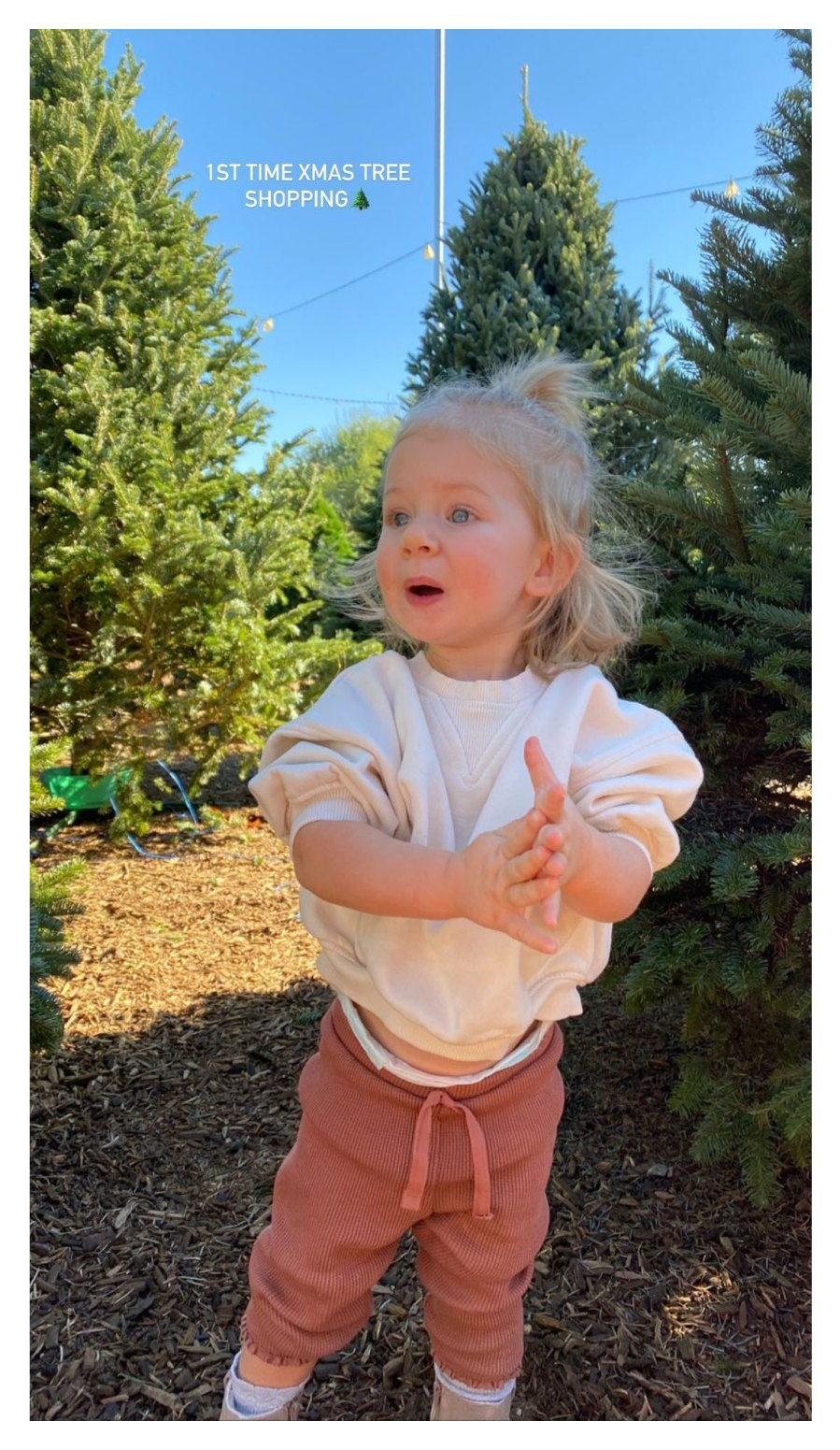 Lauren Burnham Defends Christmas Tree Shopping With Daughter Following Arie Luyendyk Jr COVID Diagnosis