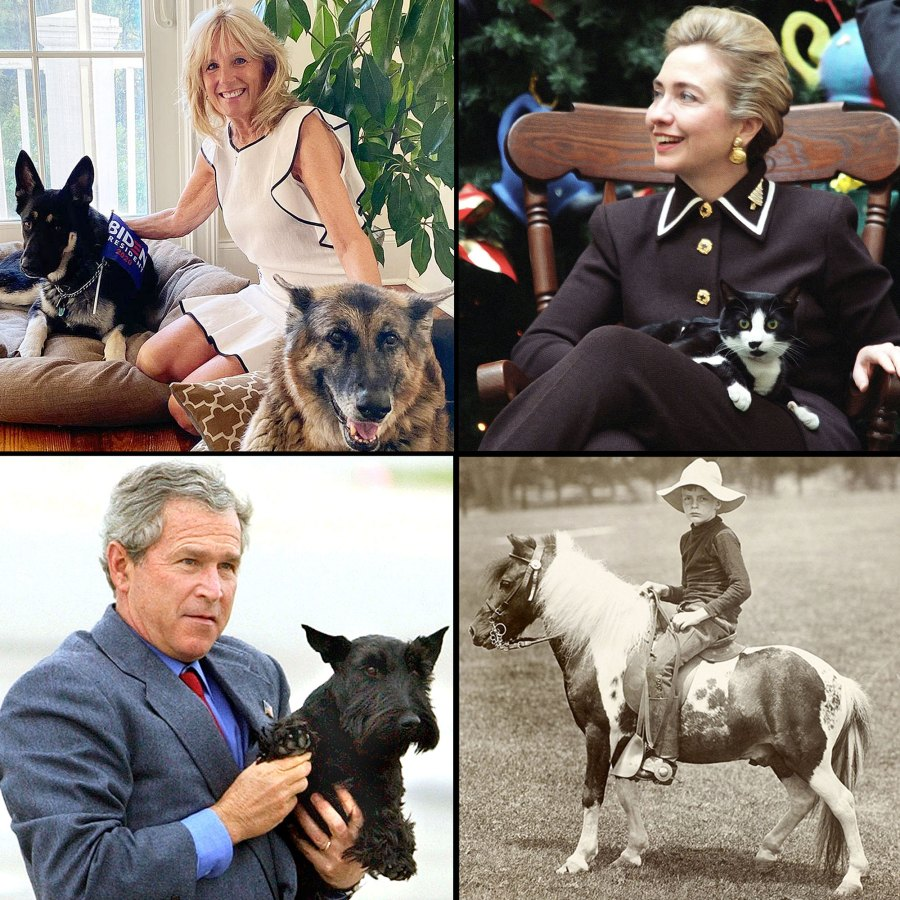 Pets White House Through Years Biden Clinton Roosevelt Bush