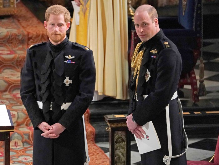 Prince Harry Feels People Are Trying to Drive a Wedge Between Him and Prince William Amid Princess Diana BBC Investigation