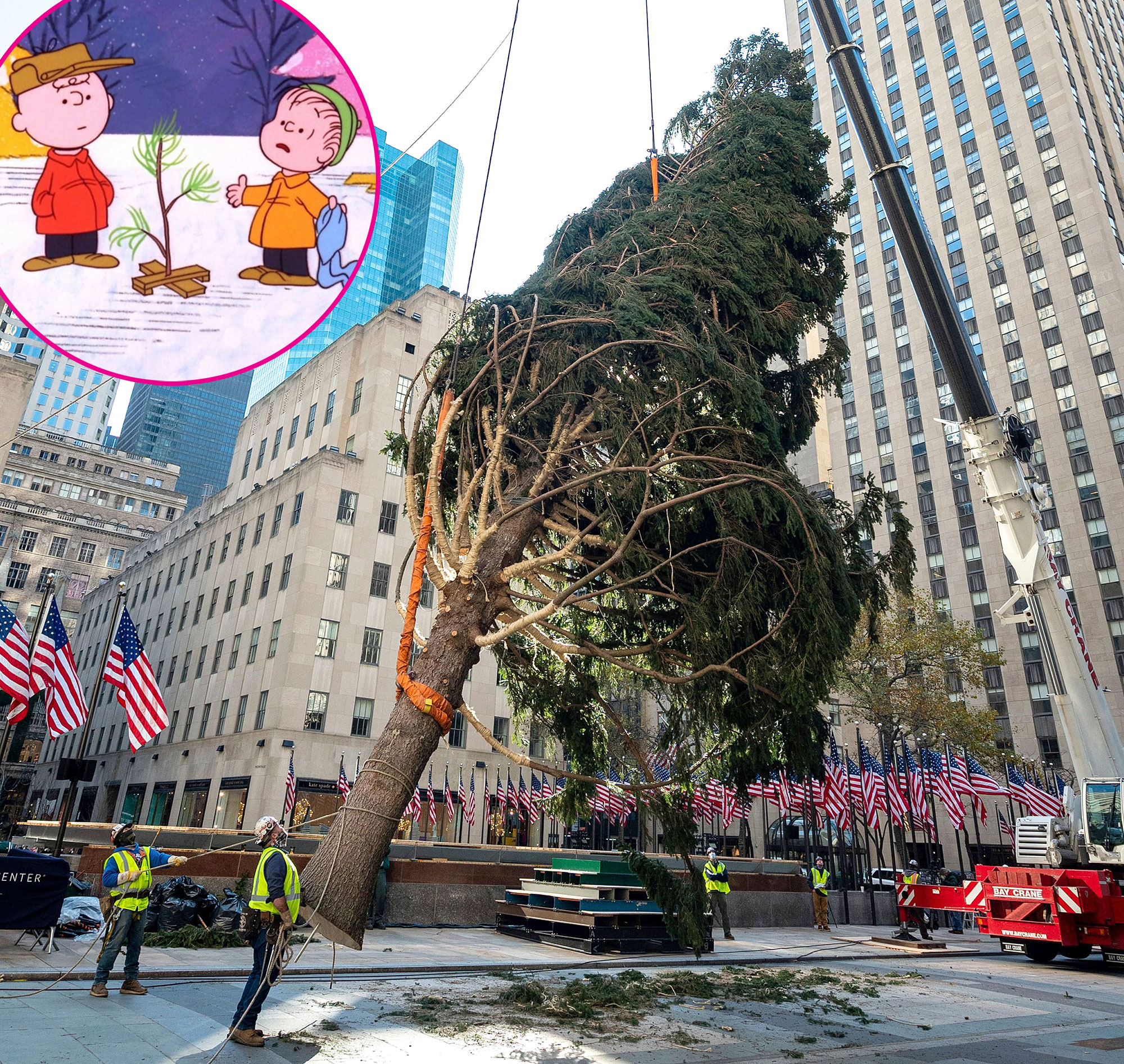 cwn vfmccsatfm https www usmagazine com celebrity news news rockefeller center claps back over viral 2020 christmas tree