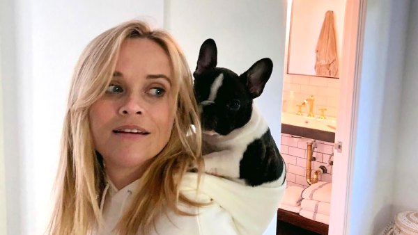 Reese Witherspoon's 'Pupdates' Are What Every Dog Lover Needs to See: Photos
