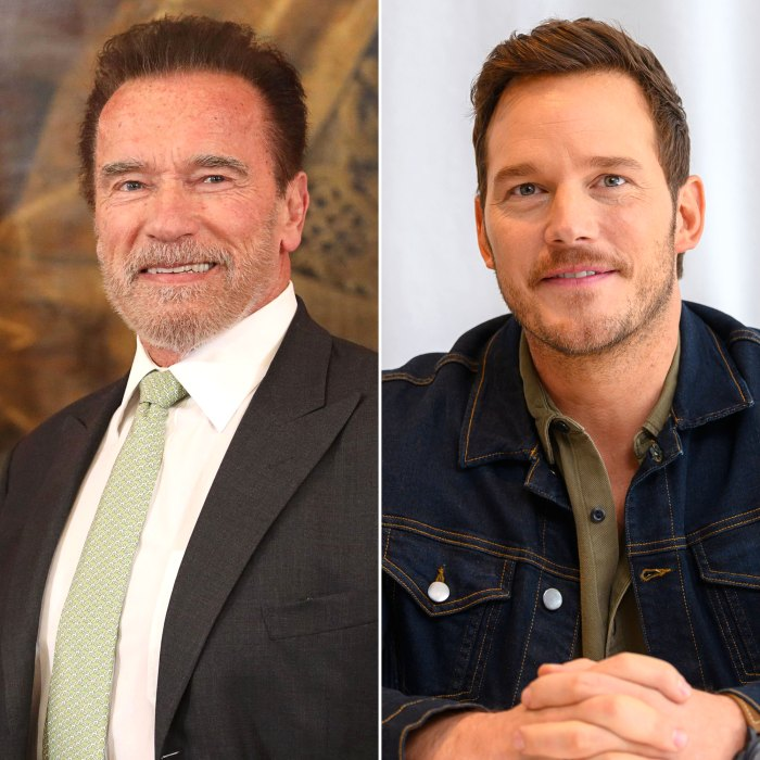 Arnold Schwarzenegger Calls Chris Pratt 'Fantastic' Husband to Daughter Katherine and Son-in-Law