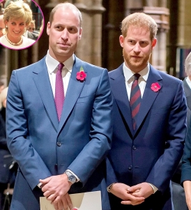 Princes William Harry Are Demanding Answers About Diana 1995 Panorama Interview