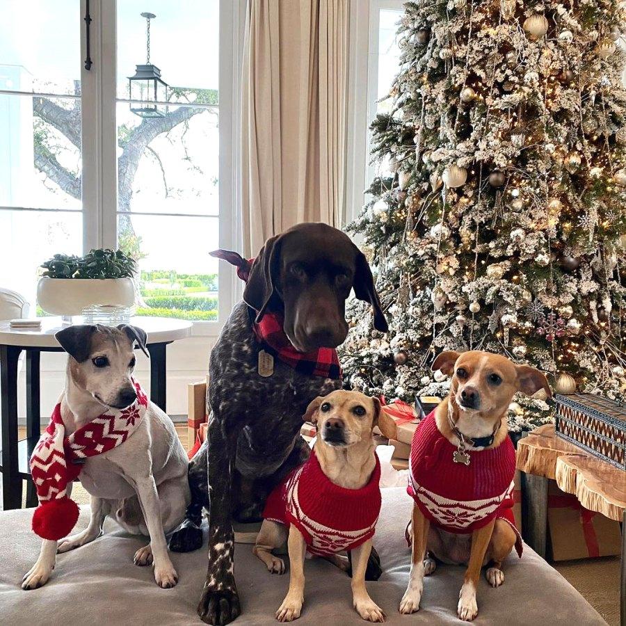 Rob Lowe Christmas Decorations 2020