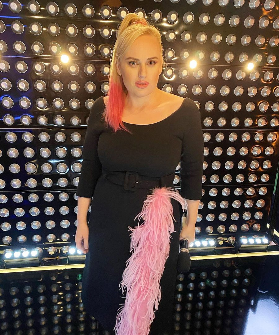 Rebel Wilson Dazzles in a LBD With a Hot Pink Ponytail