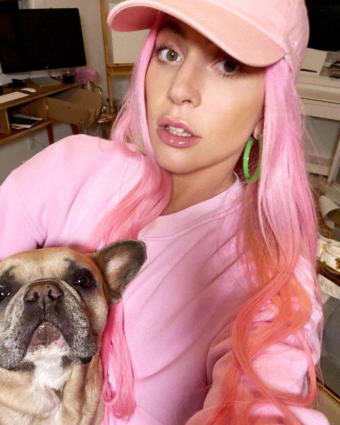 Lady Gaga Is Beside Herself After Dog Walker Shooting Offering 500000 Reward For Return Of Beloved Pets