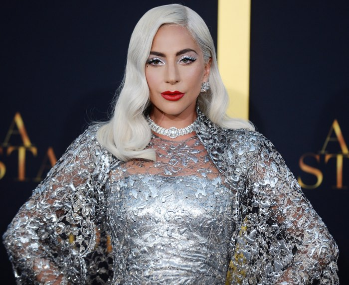 Lady Gaga's 2 Dogs Found Safe After Dog Walker Shooting, Dognapping