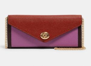 Slim Envelope Wallet With Chain In Colorblock