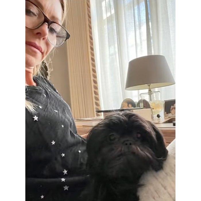 Kelly Ripa y Mark Consuelos adoptan un segundo perro de rescate llamado Lena