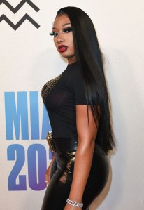 Megan Thee Stallion Gives Update on 'Natural Hair Journey'