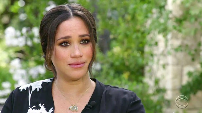 Meghan Markle Tried to Get Help for Suicidal Thoughts and the Palace Wouldnt Let Her