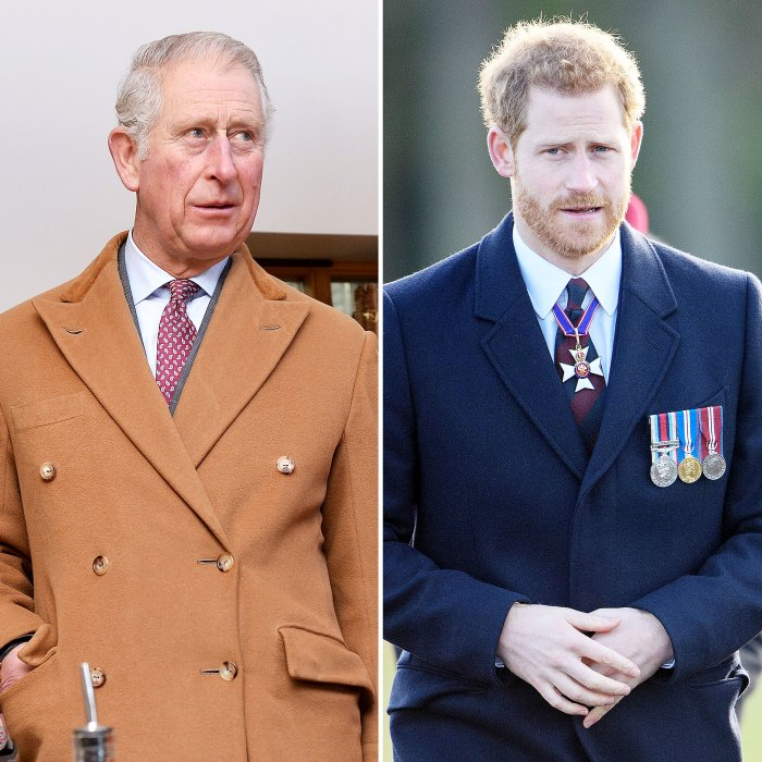 Prince Charles Doesnt Agree With Prince Harry Trashing Royal Family