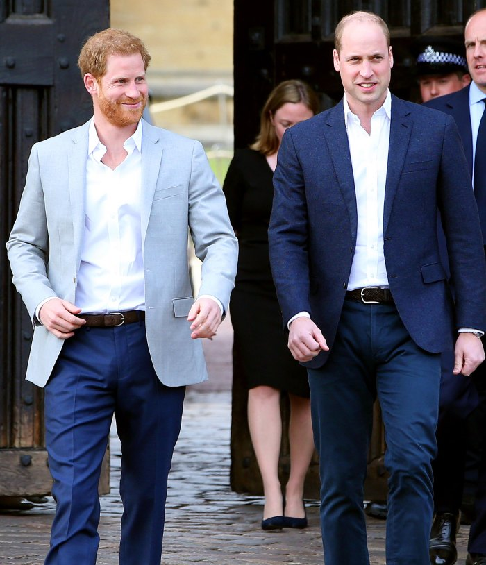 Prince William, Prince Harry Plan Reunion After Bombshell Interview