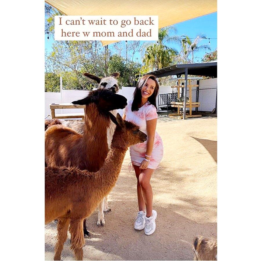 Scheana Shay Baby Bump Pics Llama Lover