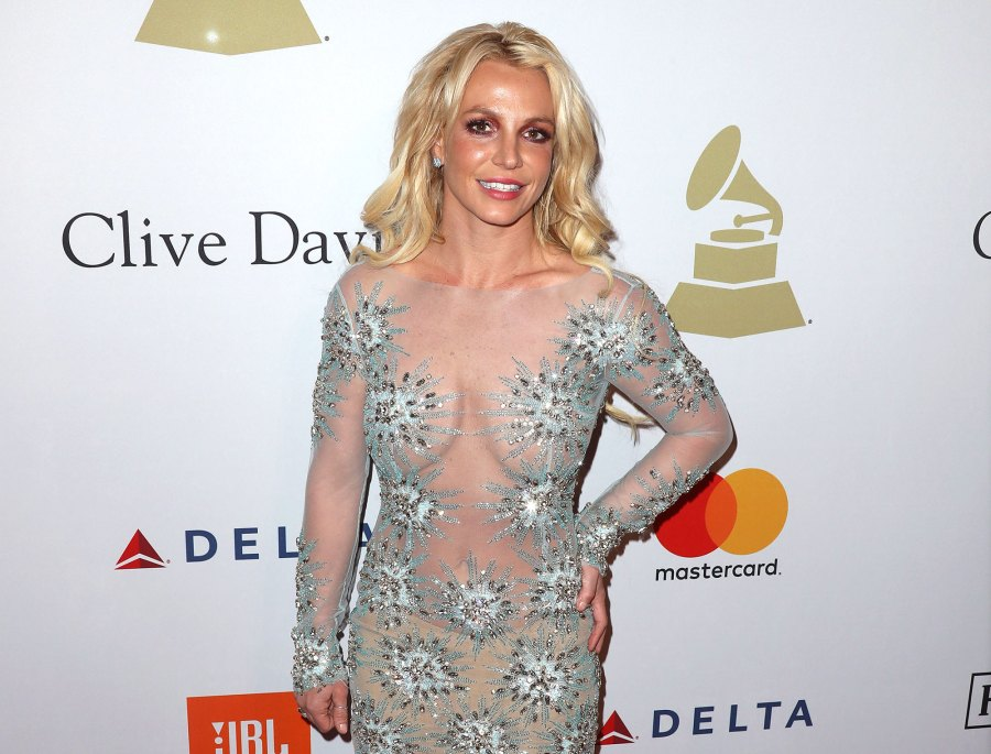She Is an Activist Who Is Jodi Montgomery 5 Things to Know About the Woman Britney Spears Wants as Her Conservator