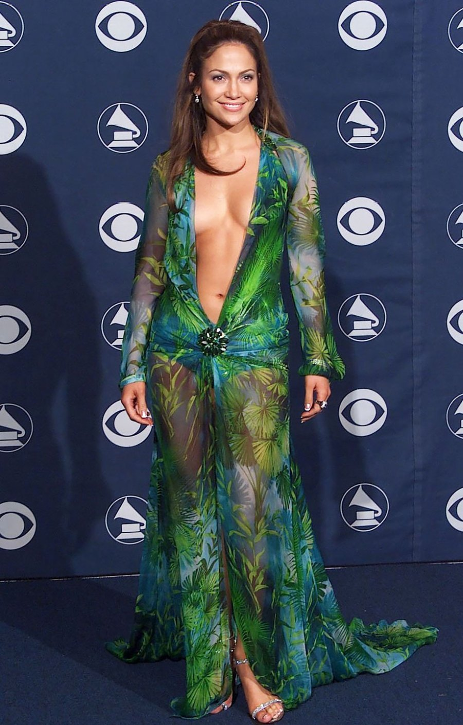Grammys Red Carpet: The Most Revealing Dresses of All Time