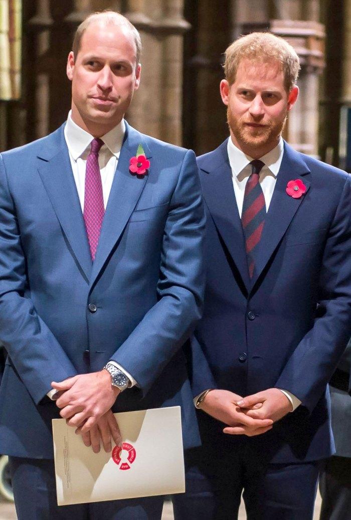 El príncipe Harry y el príncipe William aún no han 'enterrado el hacha'