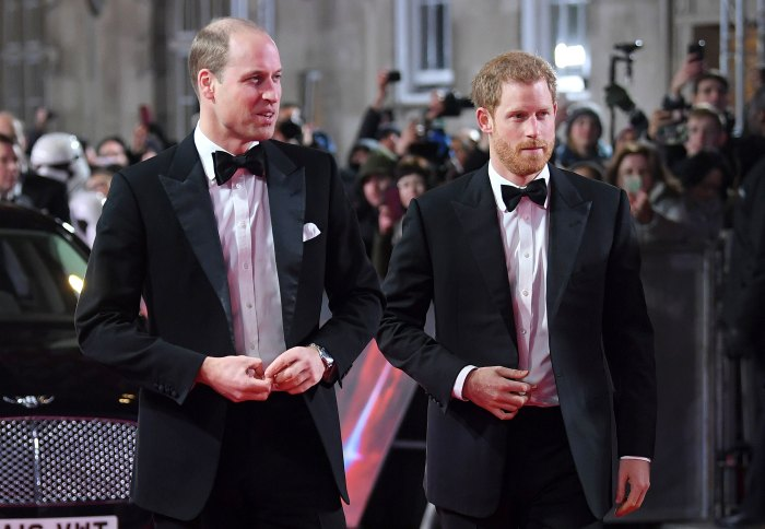 Prince William and Prince Harry Will Put Their Differences Aside at Philip Funeral 2