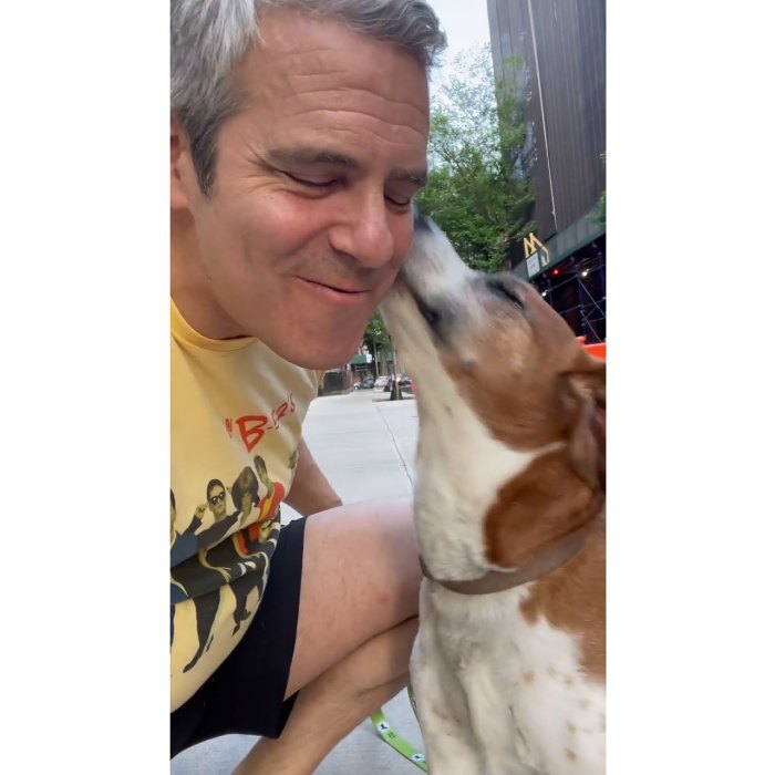 Andy Cohen Reunites With Dog Wacha 1 Year After Rehoming 3