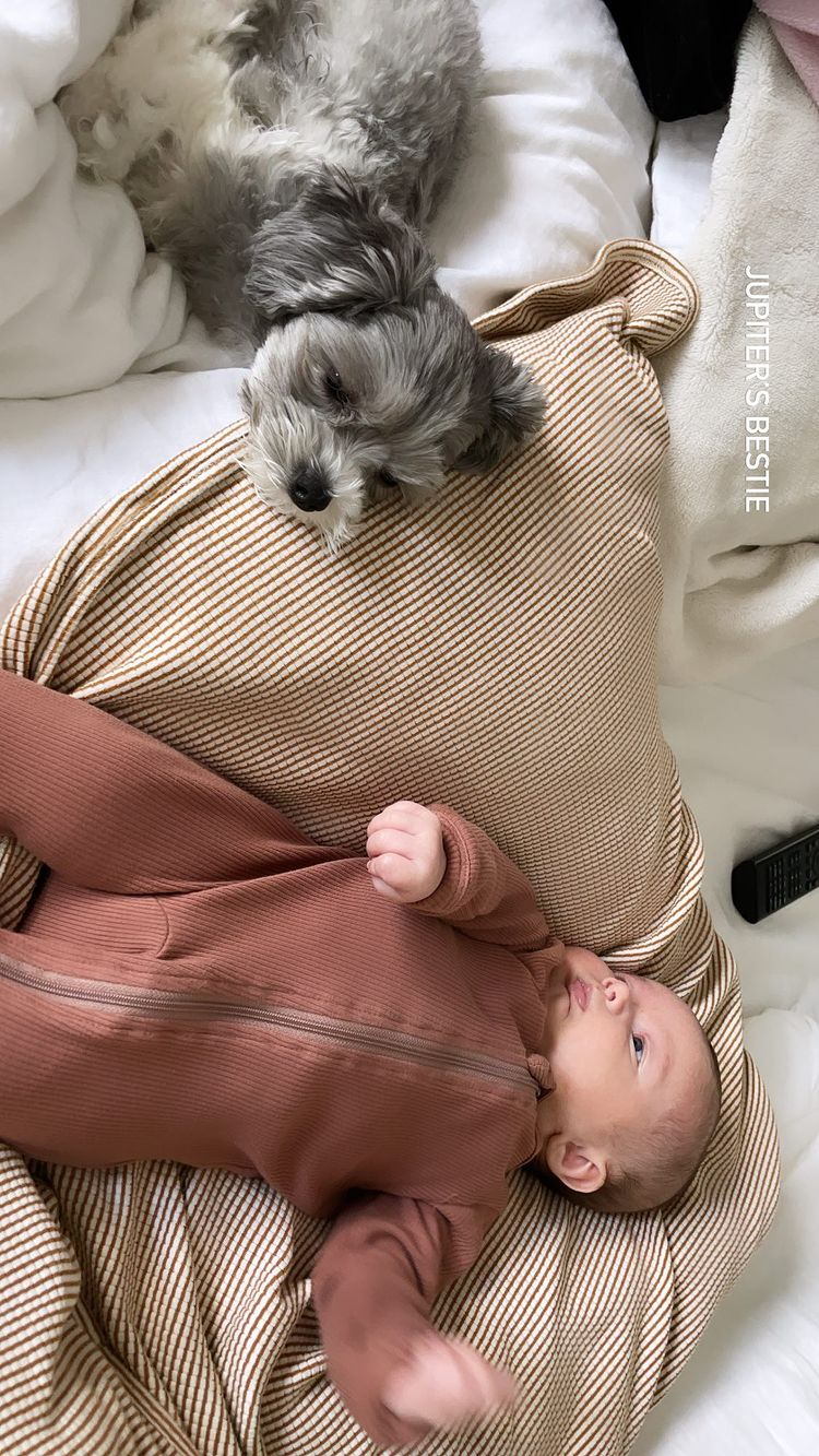 Ashley Tisdale and Christopher French's Daughter Jupiter's Baby Album Puppy Love