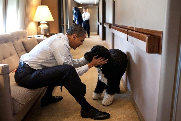 Barack Obama lamenta la muerte de Dog Bo: 'Nuestra familia perdió a un verdadero amigo'