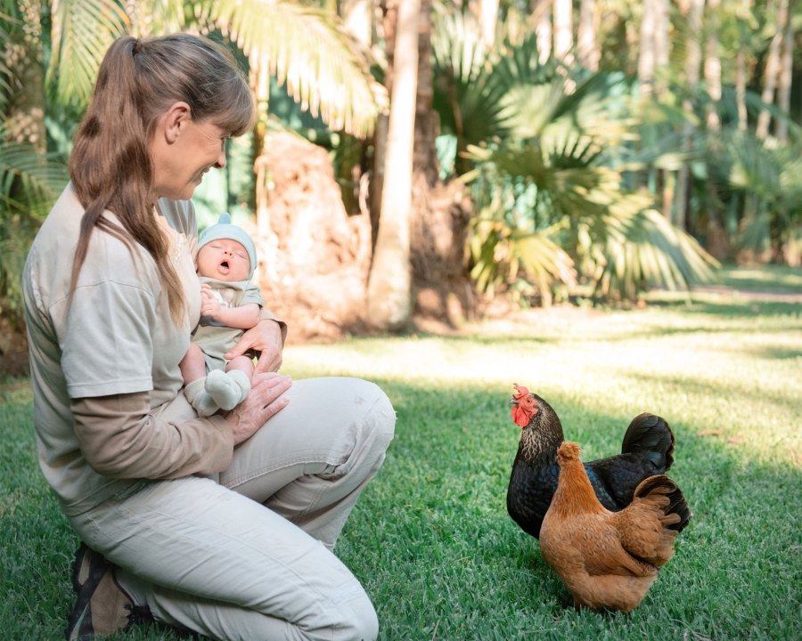 Bindi Irwin Daughter Grace Meeting Animals Rooster
