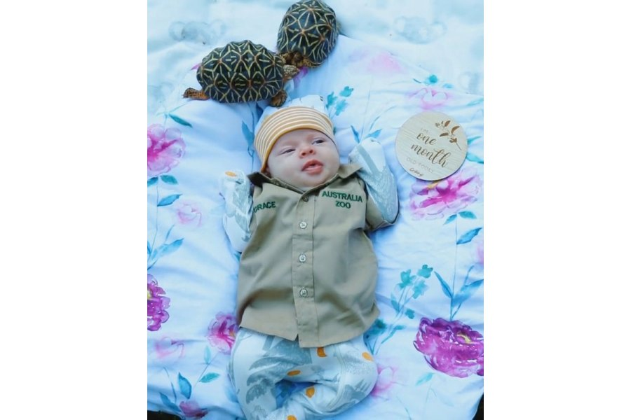 Bindi Irwin Daughter Grace Meeting Animals Turtle