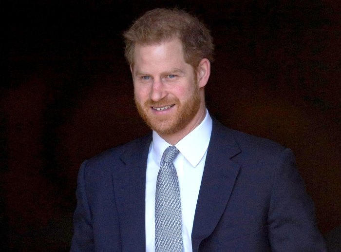 La nueva serie de Prince Harrys le ha dado una gran satisfacción
