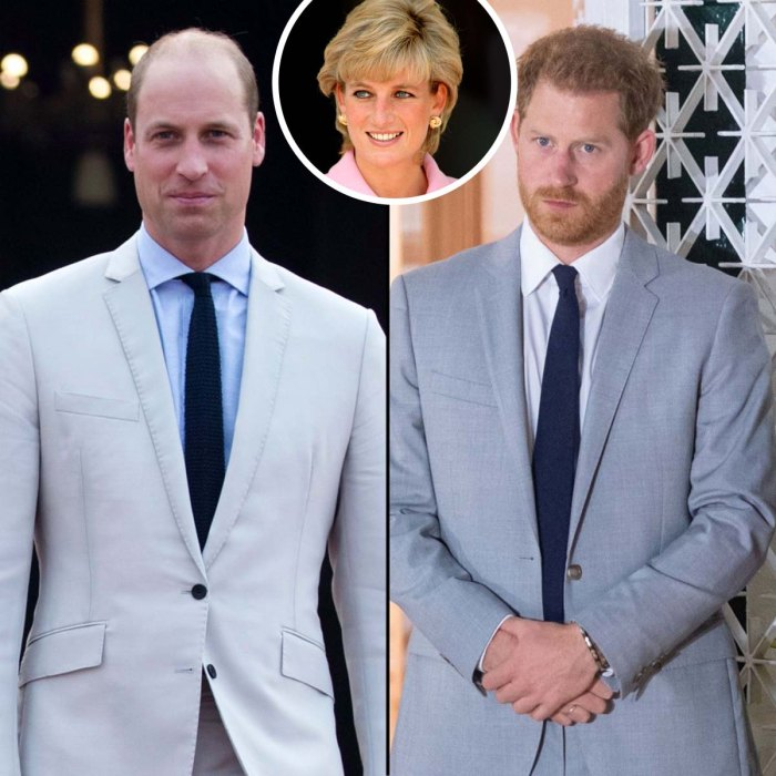 Prince William Harry Criticize Dianas BBC Interview After Investigation
