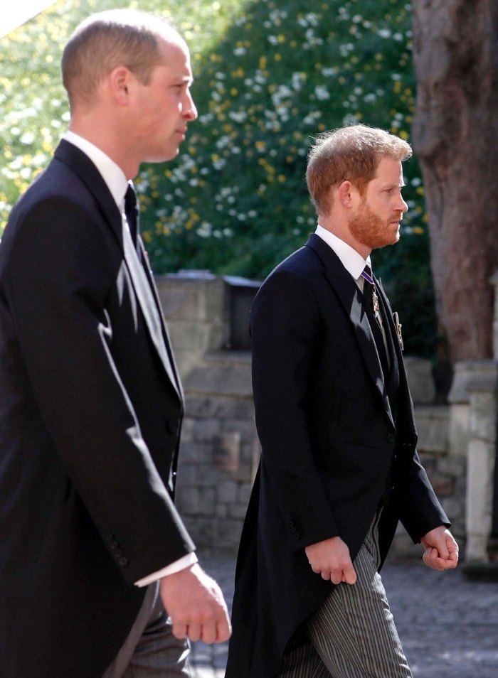 Royal Expert Prince William Prince Harrys Reunion Was Baby Step
