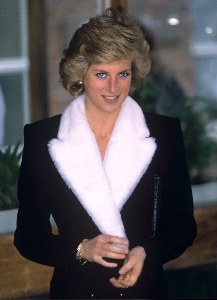 Prince William and Harry Will Be Joined by Close Family for Diana Statue Unveiling 3